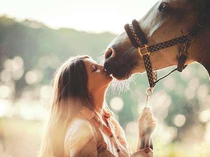 Chinese horoscope - Metal -Horse | photo: (c)  leszekglasner  - stock.adobe.com