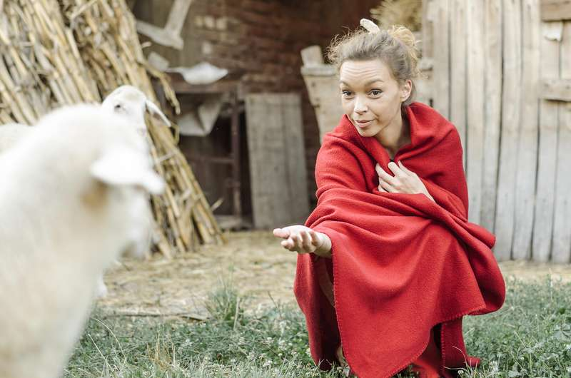 Das Schaf im chinesischen Horoskop | Foto: (c) focusandblur - stock.adobe.com