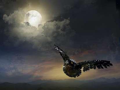 Der Mond | Foto: Fotolia