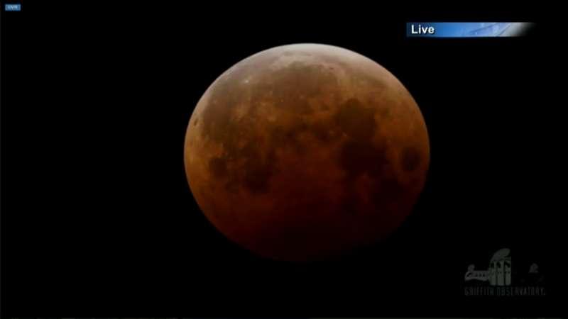 Screenshot der letzten Mondfinsternis vom Live-Stream der NASA