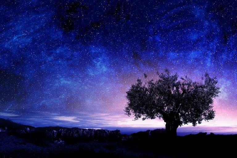 The moon reveals the feminine side. | photo: Sergey Nivens - stock.adobe.com