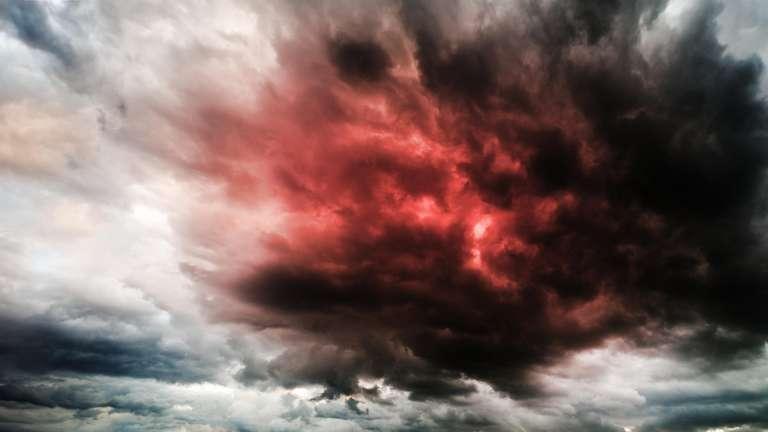5.Doch auch Streit und sogar Rachsucht könnten auftreten.| Foto: (c) science photo - stock.adobe.com
