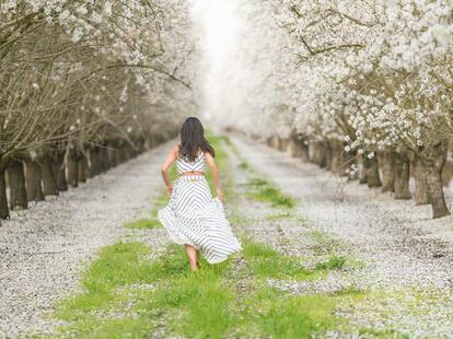 Die Ruhe der Seele ist ein herrliches Ding und die Freude an sich selbst. (Goethe) | Foto: (c) Adam  - stock.adobe.com
