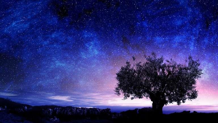 Träume sind nun intensiv und können tiefe kosmische Erkenntnisse bringen.Sergey Nivens - stock.adobe.com