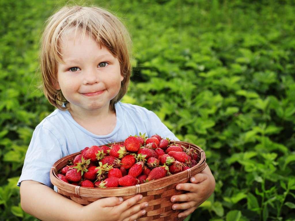 © Chepko Danil - fotolia.com