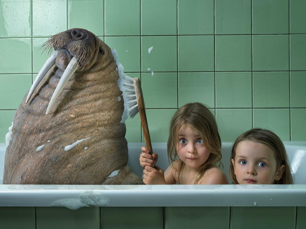 Lucky ones of the week | Photo: © johnwilhelm - fotolia.com