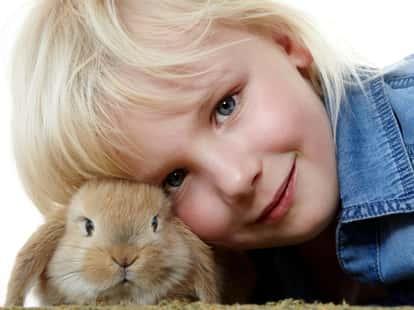 photo © Karin & Uwe Annas - fotolia.com
