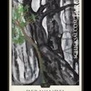 """Tarotkarte """"Der Wandel"""" im Schicksals-Tarot © Verlag Franz"""