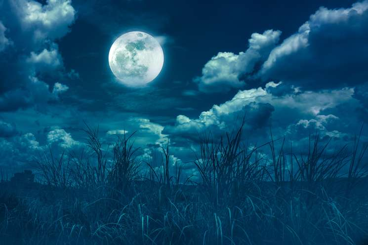 Today is full moon | Photo © kdshutterman - stock.adobe.com