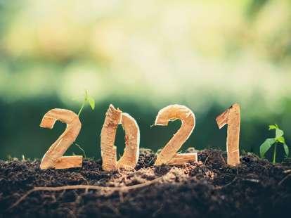 12 month future forecast 2021