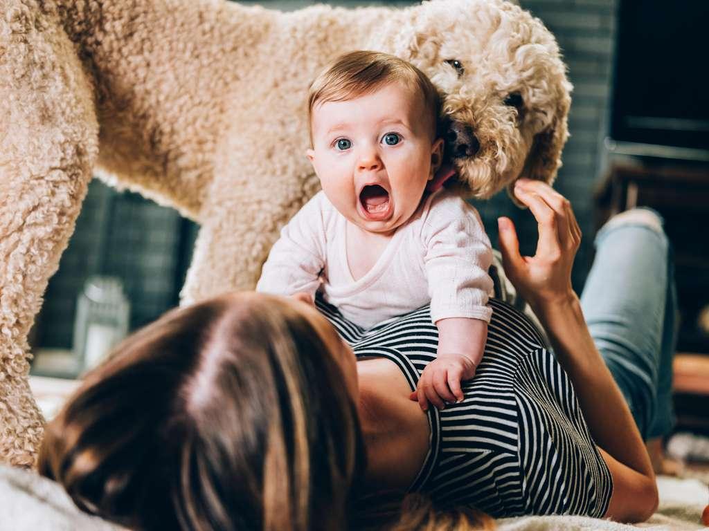 | Photo: © iStockphoto.com/Sisoje