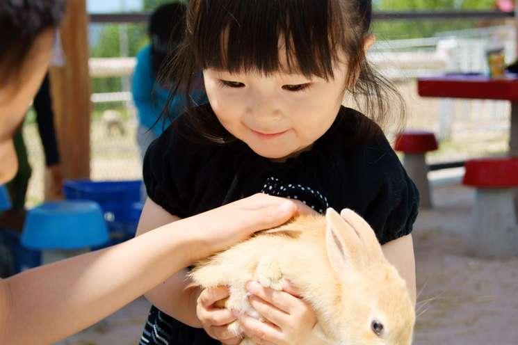 Darlings of Fortune cw 35 | photo: (c) nyankoronosuke - stock.adobe.com