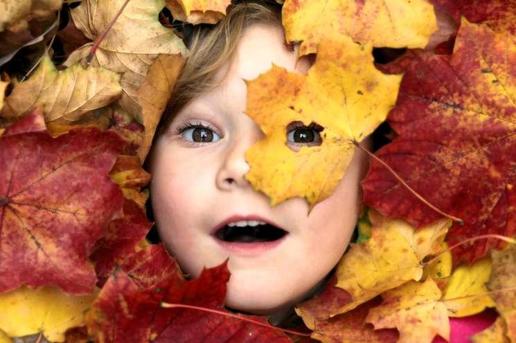 Foto: © StefanieB. - Fotolia.com