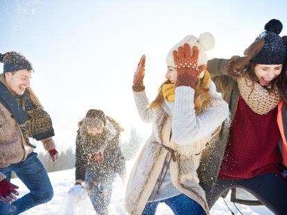 Löwe Februar 2018 | Foto: © gpointstudio - fotolia.com