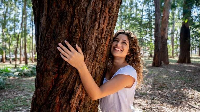 Der Schütze hat diese Woche Kraft wie ein starker Baum | Foto: © iStockphoto.com/andresr
