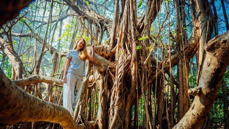 Der Wassermann könnte diese Woche großes bewirken | Foto: © exebiche - stock.adobe.com