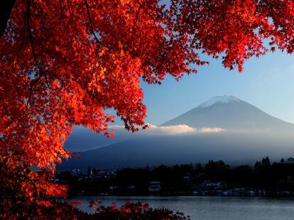 Monatshoroskop Oktober| Foto: © iStockphoto.com/mantaphoto