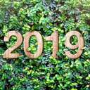 Tageshoroskope 2019 | Foto: © weedezign  - stock.adobe.com