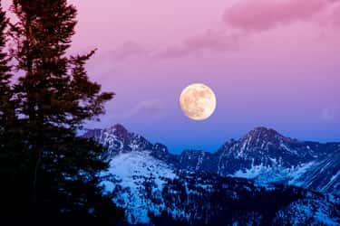 daily horoscope february 19th 2019 | Photo: © iStockphoto.com/Adventure_Photo