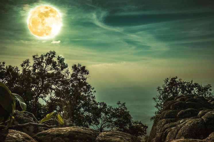 Daily horoscope March 7th .2019 | Photo: © kdshutterman - stock.adobe.com