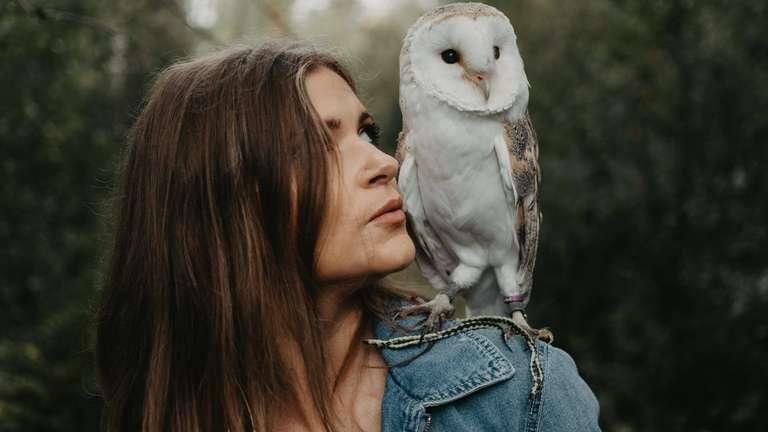 Photo: (c) | Irinabakhmurova / shutterstock.com