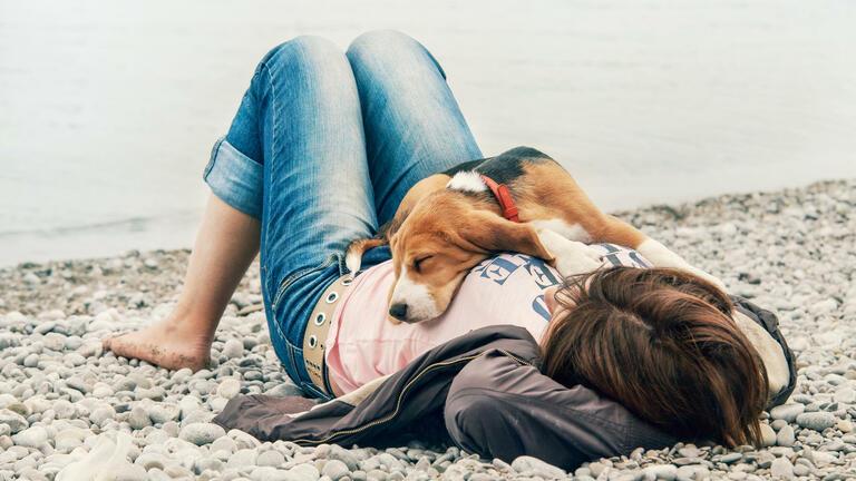   Foto: © iStockphoto.com/Solovyova
