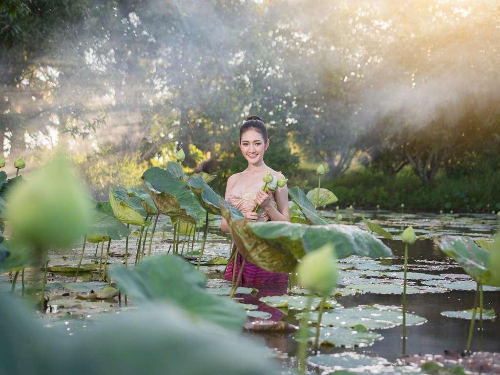 | Photo: (c)  suriya wongwai / shutterstock.com