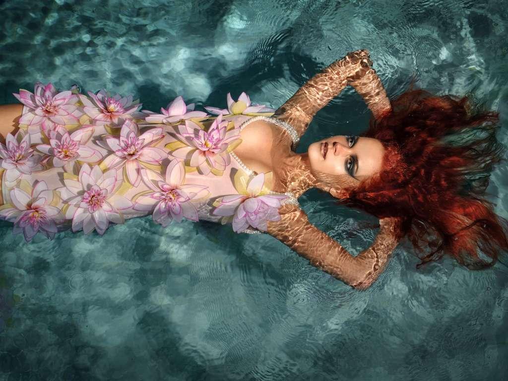   Foto: (c) Sundraw Photography / shutterstock.com