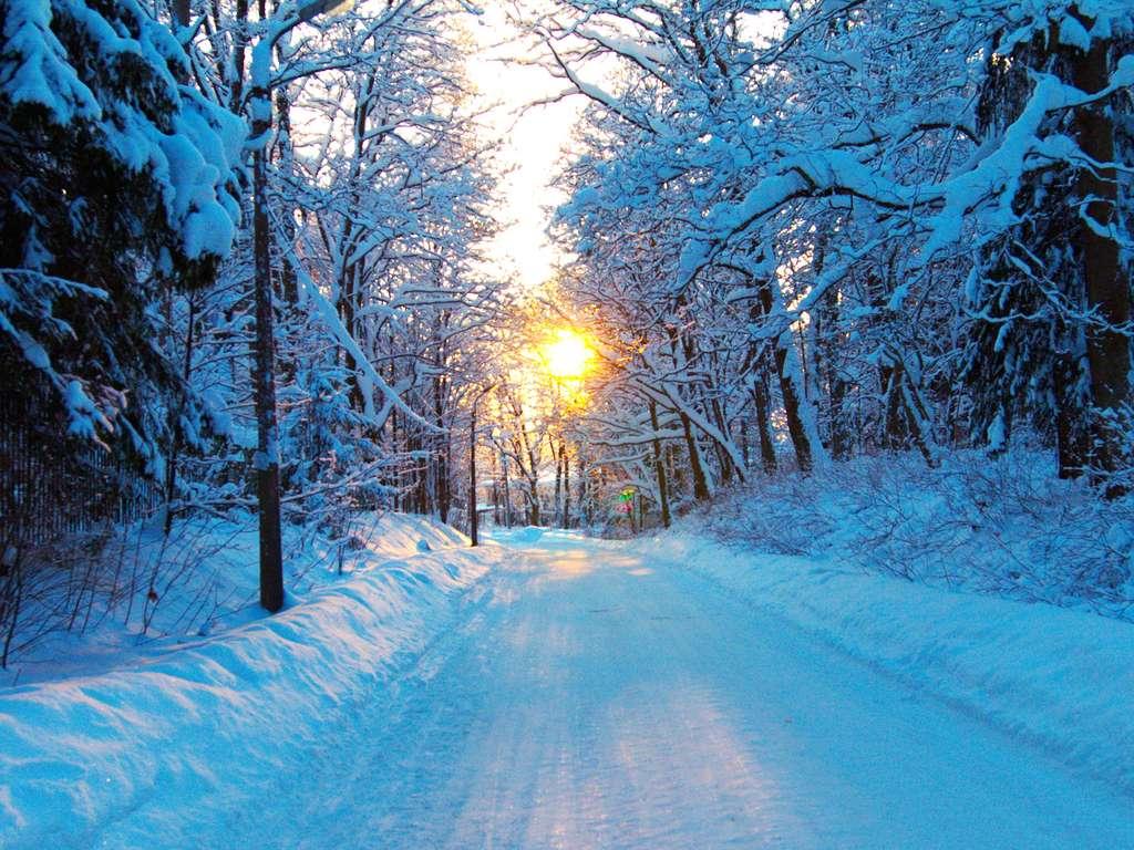 daily horoscope January 24th 2020 | Photo: © OlegMirabo  - stock.adobe.com