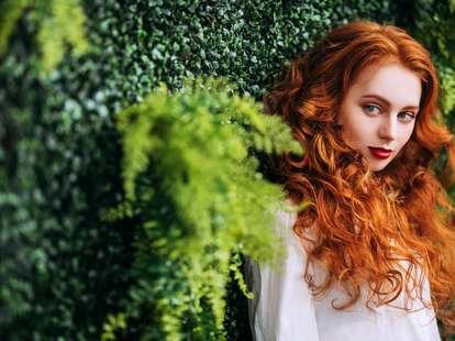 Photo: Kiselev Andrey Valerevich / shutterstock.com