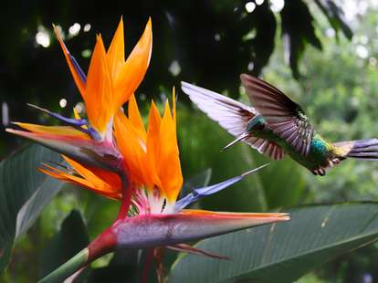 photo: (c) Henner Damke - fotolia.com