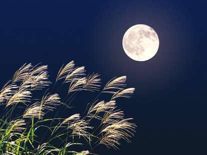 Full moon | Photo: © miiko - Fotolia.com